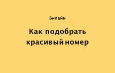 Как выбрать красивый номер Билайн в Казахстане: пошаговая инструкция