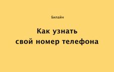 Как узнать свой номер Билайн в Казахстане