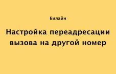 Как настроить переадресацию на Билайн в Казахстане